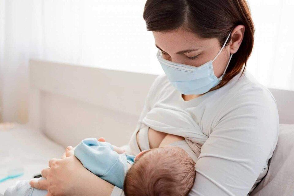 Coronavirus: prueban que los anticuerpos se transmiten a través de la leche materna
